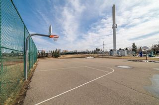 Photo 31: 4333 58 Street NE in Calgary: Temple Detached for sale : MLS®# A1092710