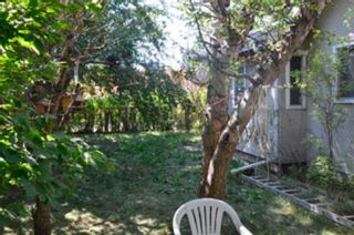 Photo 7: 1302 35 Street SE in Calgary: Albert Park/Radisson Heights Detached for sale : MLS®# A1138554