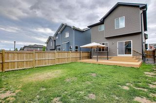Photo 40: 40 THOROUGHBRED Boulevard: Cochrane Detached for sale : MLS®# A1027214