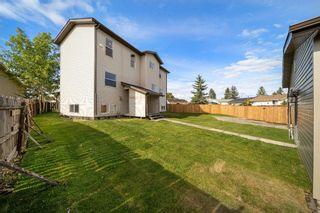 Photo 45: 28 Falton Mews NE in Calgary: Falconridge Detached for sale : MLS®# A1144383