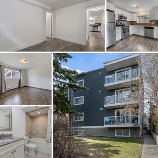 Main Photo: 11 2117 16 Street SW in Calgary: Bankview Apartment for sale : MLS®# A1101919
