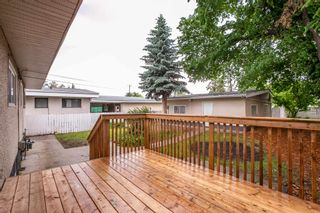 Photo 41: 9151 150 Street in Edmonton: Zone 22 House for sale : MLS®# E4250068