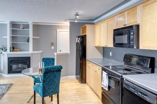Photo 16: 202 343 4 Avenue NE in Calgary: Crescent Heights Apartment for sale : MLS®# A1118718