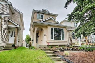 Photo 42: 231 COACHWAY Road SW in Calgary: Coach Hill Detached for sale : MLS®# C4305633