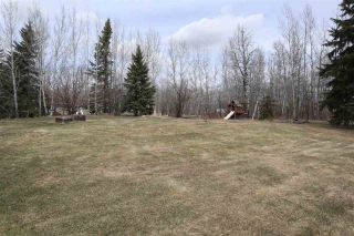 Photo 38: 4502 22 Street: Rural Wetaskiwin County House for sale : MLS®# E4241522