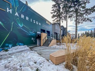 Photo 1: 1815 33 Avenue SW in Calgary: South Calgary Detached for sale : MLS®# A1079165