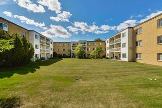 Photo 33: 205 11430 40 Avenue in Edmonton: Zone 16 Condo for sale : MLS®# E4258318