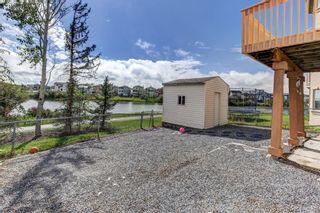 Photo 42: 147 Taracove Landing NE in Calgary: Taradale Detached for sale : MLS®# A1144169