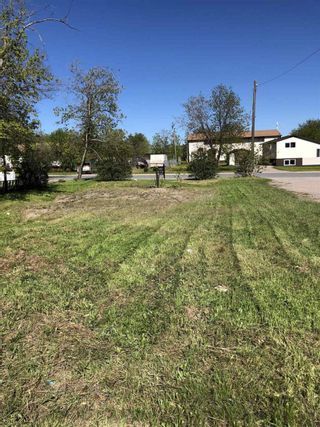 Photo 4: 15 Fifth Street in Balmertown: Vacant Land for sale : MLS®# TB210489