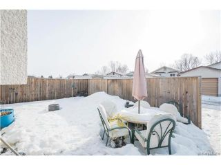 Photo 17: 59 Laurent Drive in Winnipeg: Grandmont Park Residential for sale (1Q)  : MLS®# 1703999