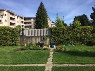 Photo 18: 206 1068 Tolmie Ave in VICTORIA: SE Maplewood Condo for sale (Saanich East)  : MLS®# 728377