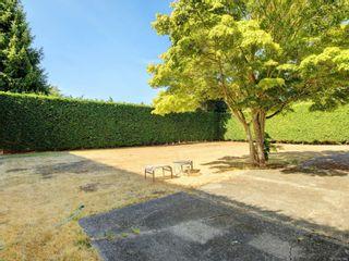 Photo 12: 4160 Longview Dr in : SE Gordon Head House for sale (Saanich East)  : MLS®# 883961