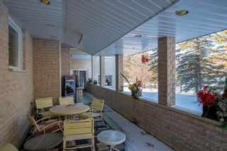 Photo 9: 102 Stevens Avenue West in Lockport: R13 Residential for sale : MLS®# 202100345