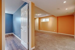 Photo 35: 1571 COPPERFIELD Boulevard SE in Calgary: Copperfield Detached for sale : MLS®# A1107569