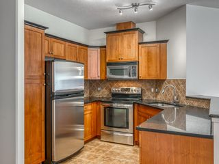 Photo 6: 323 20 Discovery Ridge Close SW in Calgary: Discovery Ridge Apartment for sale : MLS®# A1128263