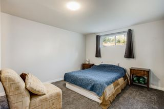 Photo 22: 4 Copperstone Landing SE in Calgary: Copperfield Detached for sale : MLS®# A1147039