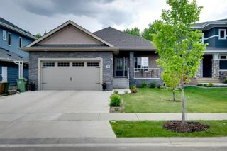 Photo 1: 68 Enchanted Way: St. Albert House for sale : MLS®# E4248696