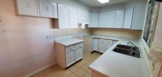 Photo 18: 239 HUMBERSTONE Road in Edmonton: Zone 35 House for sale : MLS®# E4262949