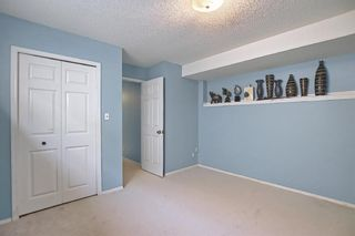 Photo 25: 78 Appleburn Close SE in Calgary: Applewood Park Detached for sale : MLS®# A1100841