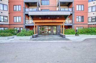 Photo 24: 419 5 ST LOUIS Street: St. Albert Condo for sale : MLS®# E4260616