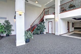 Photo 31: 202 1920 14 Avenue NE in Calgary: Mayland Heights Apartment for sale : MLS®# A1106504