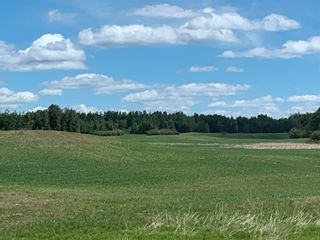 Photo 6: TWP 475 RR 31: Rural Leduc County Rural Land/Vacant Lot for sale : MLS®# E4244953