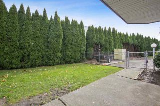 """Photo 20: 105B 45655 MCINTOSH Drive in Chilliwack: Chilliwack W Young-Well Condo for sale in """"McIntosh Place"""" : MLS®# R2515821"""