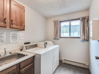 Photo 23: 7 3911 1 Street NE in Calgary: Highland Park Apartment for sale : MLS®# A1059987