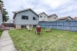 Photo 35: 3613 44 Avenue in Edmonton: Zone 29 House for sale : MLS®# E4246393