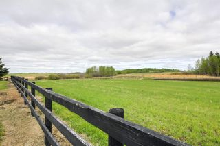 Photo 50: 52117 RGE RD 53: Rural Parkland County House for sale : MLS®# E4246255