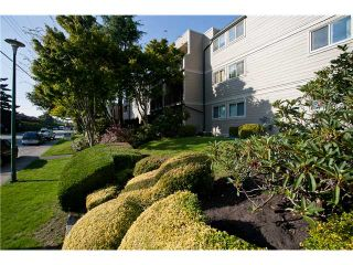 "Photo 1: 302 1103 HOWIE Avenue in Coquitlam: Central Coquitlam Condo for sale in ""THE WILLOWS"" : MLS®# V916675"