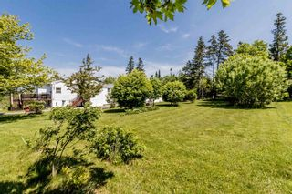 Photo 24: 1652 Ben Phinney Road in Margaretsville: 400-Annapolis County Residential for sale (Annapolis Valley)  : MLS®# 202116326