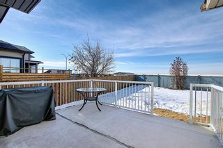 Photo 48: 260 SPRINGMERE Way: Chestermere Detached for sale : MLS®# A1073459