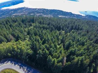 Photo 5: 17 E HOLLYBURN Ridge in West Vancouver: Cypress Land for sale : MLS®# R2532513