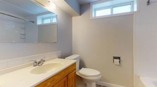 Photo 28: 3807 49 Street NE in Calgary: Whitehorn Detached for sale : MLS®# A1066626