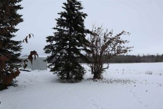 Photo 30: 4702 53 Avenue: Thorsby House for sale : MLS®# E4220799