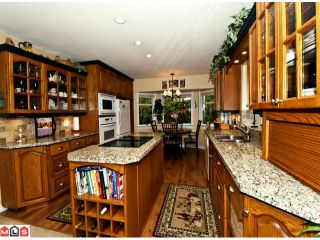 Photo 4: 13551 14A Avenue in Surrey: Crescent Bch Ocean Pk. House for sale (South Surrey White Rock)  : MLS®# F1214007