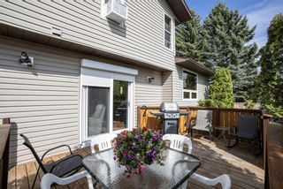 Photo 38: 31 Mchugh Place NE in Calgary: Mayland Heights Detached for sale : MLS®# A1111155