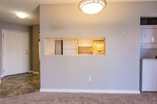 Photo 8: 309 17109 67 Avenue in Edmonton: Zone 20 Condo for sale : MLS®# E4226404