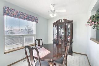 Photo 12: 351 Applewood Drive SE in Calgary: Applewood Park Detached for sale : MLS®# A1094539