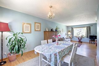 Photo 6: 1519 22A Street NW in Calgary: Hounsfield Heights/Briar Hill Detached for sale : MLS®# A1145266