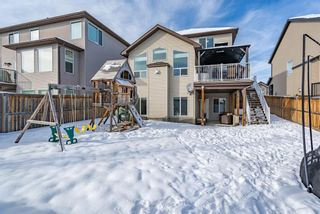 Photo 40: 209 Topaz Gate: Chestermere Residential for sale : MLS®# A1071394