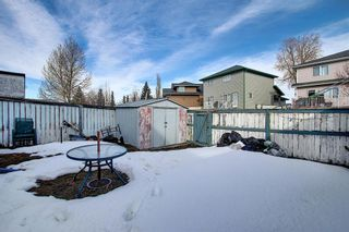 Photo 47: 148 Arbour Wood Mews NW in Calgary: Arbour Lake Detached for sale : MLS®# A1079905