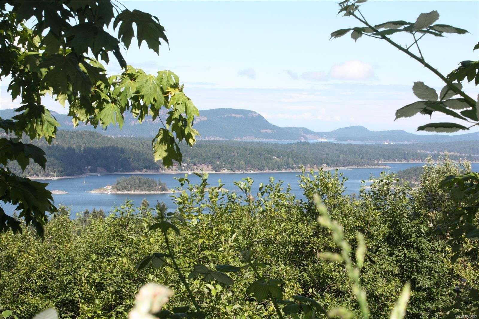 Main Photo: 188 Devine Dr in : GI Salt Spring Land for sale (Gulf Islands)  : MLS®# 865499