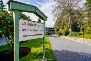 """Photo 27: 207 3901 CARRIGAN Court in Burnaby: Government Road Condo for sale in """"Lougheed Estates II"""" (Burnaby North)  : MLS®# R2515286"""