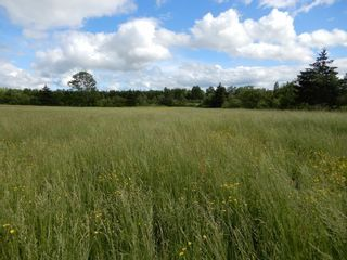 Photo 8: Lot 17 Second Division Road in Heathbell: 108-Rural Pictou County Vacant Land for sale (Northern Region)  : MLS®# 202116209