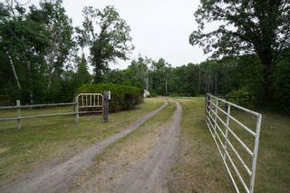 Photo 49: 39066 Road 64 N in Portage la Prairie RM: House for sale : MLS®# 202116718