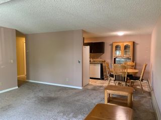 Photo 22: 206 280 Banister Drive: Okotoks Apartment for sale : MLS®# A1145640