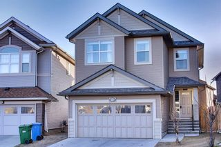 Main Photo: 71 Skyview Shores Road NE in Calgary: Skyview Ranch Detached for sale : MLS®# A1095104