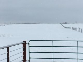 Photo 34: RR74 Twp 514: Rural Parkland County Rural Land/Vacant Lot for sale : MLS®# E4183435